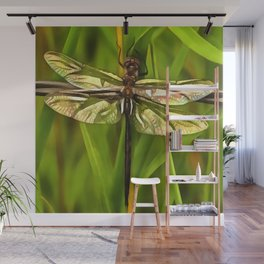 Dragonfly In Brown And Yellow Wall Mural