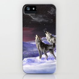 Arctic iPhone Case