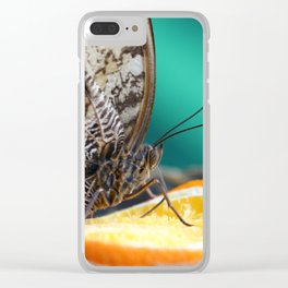 butterfly sucking nectar from a slice of orange Clear iPhone Case