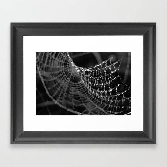 Fragile Beauty Framed Art Print