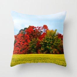 October's Flag Throw Pillow