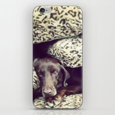 Such a Lady iPhone & iPod Skin