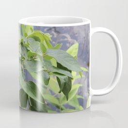 Leaves at Black Bayou, Monroe, Louisiana Coffee Mug