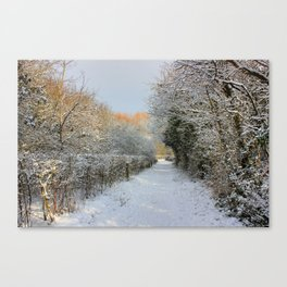 Winter Walkway Canvas Print