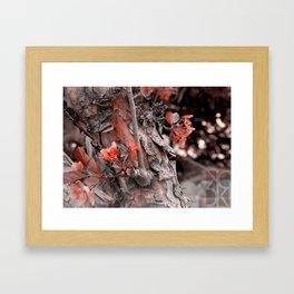 October Autumn Framed Art Print