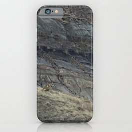 Badlands Dog iPhone Case