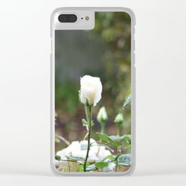 White rose in the mist Clear iPhone Case