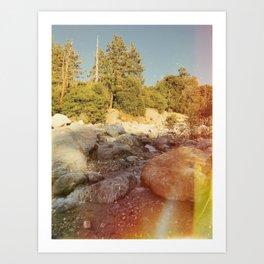 Forest Falls III Art Print
