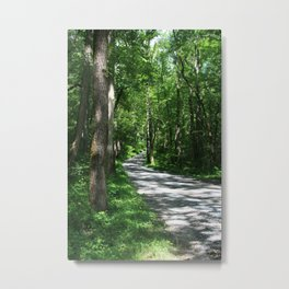 Sunny Path Metal Print