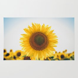 Sunflower´s Season (V) Rug