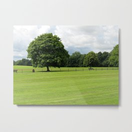 Estate Tree Metal Print