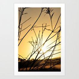 Silhouette sunrise Art Print
