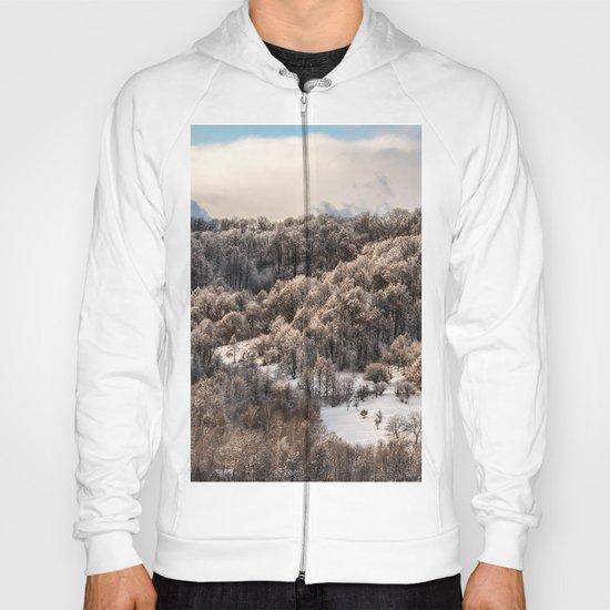 Winter Landscape 3 Hoody