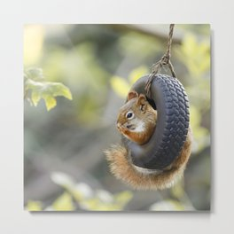 Wheeeee Goes The Squirrel Metal Print