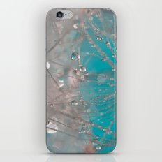 So In Love iPhone & iPod Skin