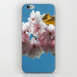 Cheery Blossom Up Close iPhone Skin