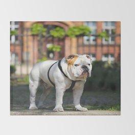 No Entry - Bulldog #decor #homedecor Throw Blanket