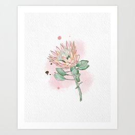 King Protea Art Print