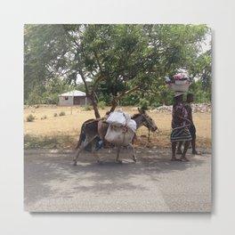 Haitian Donkey Metal Print