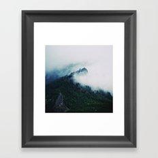 Film + Grain: Mountain Mist Framed Art Print