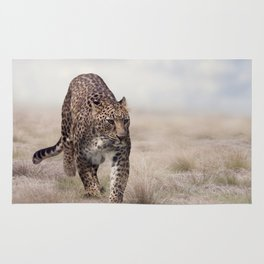 Leopard walking in the grassland Rug