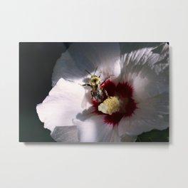 """""""Bee Still"""" Metal Print"""