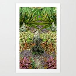 Marihuanaaas Art Print