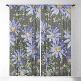 Sunbathing Blue Daisies Sheer Curtain
