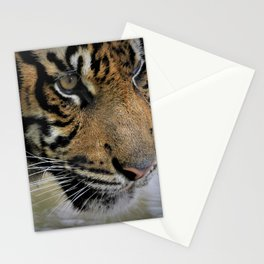 Determined Tiger Stationery Cards