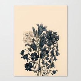 Flowers near me 11 Canvas Print