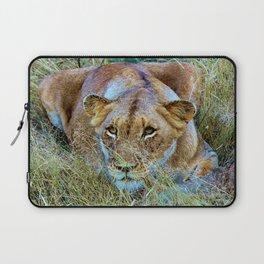 Lioness Laptop Sleeve
