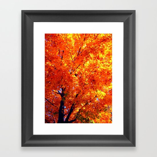 Leaves of Autumn Framed Art Print