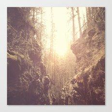 Forgotten Forest Canvas Print