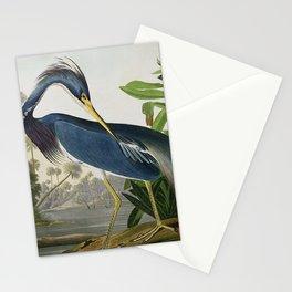 John James Audubon Louisiana Heron Painting Stationery Cards