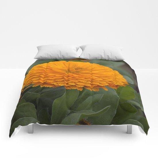 Calendula Flower Comforters