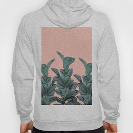 Rubber trees in group with beige pink Hoody