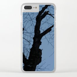 Winter After Dusk Clear iPhone Case