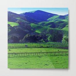 Lush Green Grass Majestic Meadow Scenic Photo Metal Print