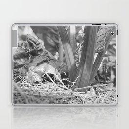 Swiss Chard Laptop & iPad Skin