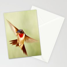 The Hummingbird Stationery Cards