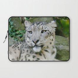 Snow Leopard stare Laptop Sleeve