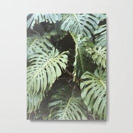 Hawaiian Foliage pt. 1 Metal Print