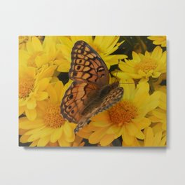 Morning surprise Metal Print