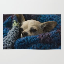 I am little and it's cold! Rug