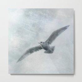 Solitary Seabird ii - Ocean Seagull In Flight Metal Print