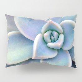 Pastel Succulent Pillow Sham