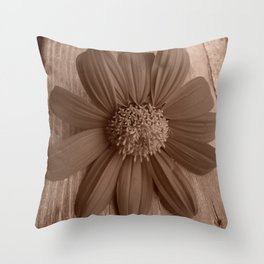 Rustic Mexican Sunflower in windowsill Throw Pillow