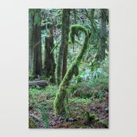 dr seuss Canvas Prints featuring Dr. Seuss Tree by shamik