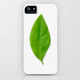 Brisk Bright Leaves iPhone Case