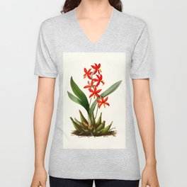 Epidendrum Selenium Vintage Scientific Botanical Flower Illustration Hand Drawn Art Unisex V-Neck